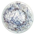 Rame glass plate